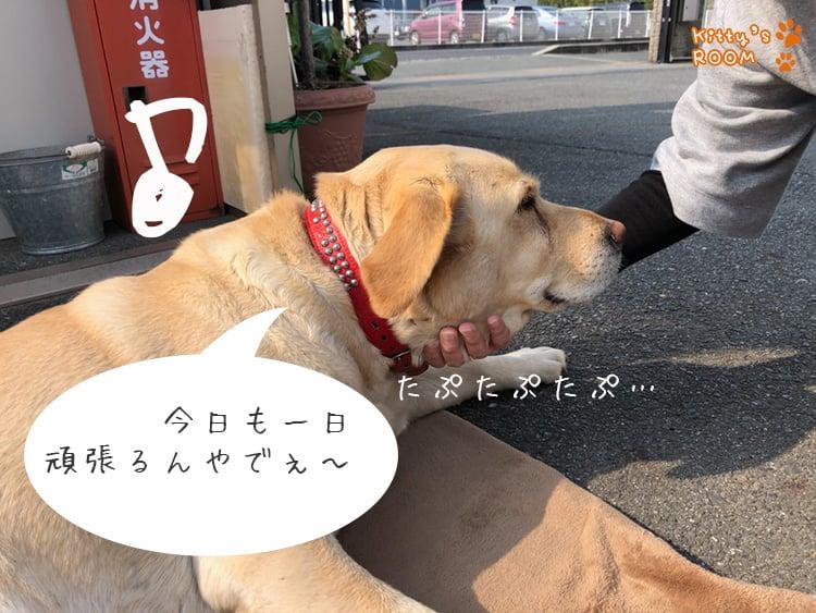 http://choku.co.jp/files/libs/1012/20180417163755975.jpg