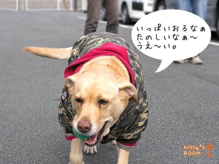 http://choku.co.jp/files/libs/603/201701300927318918.jpg