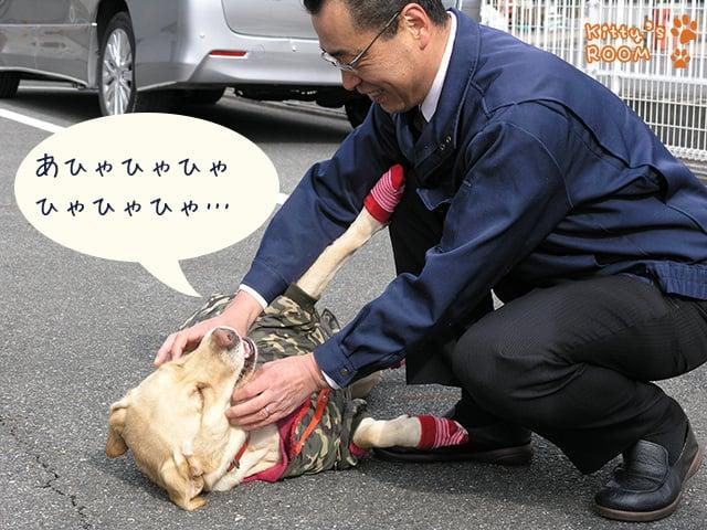 http://choku.co.jp/files/libs/639/201701311140149814.jpg