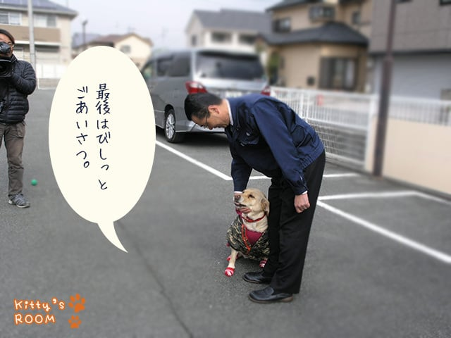 http://choku.co.jp/files/libs/640/201701311140171164.jpg