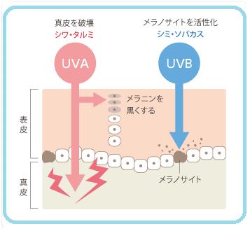 http://choku.co.jp/files/libs/762/201705021504434181.png