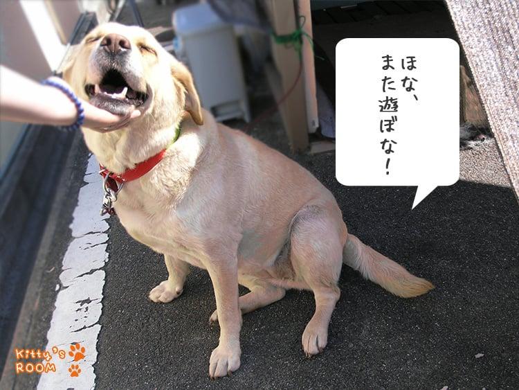 http://choku.co.jp/files/libs/778/201705261546151990.jpg