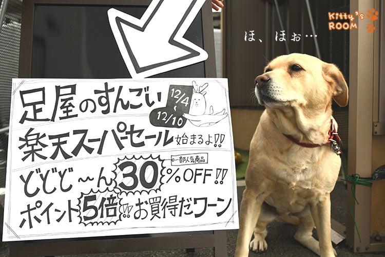 http://choku.co.jp/files/libs/1125/201812030953016990.jpg