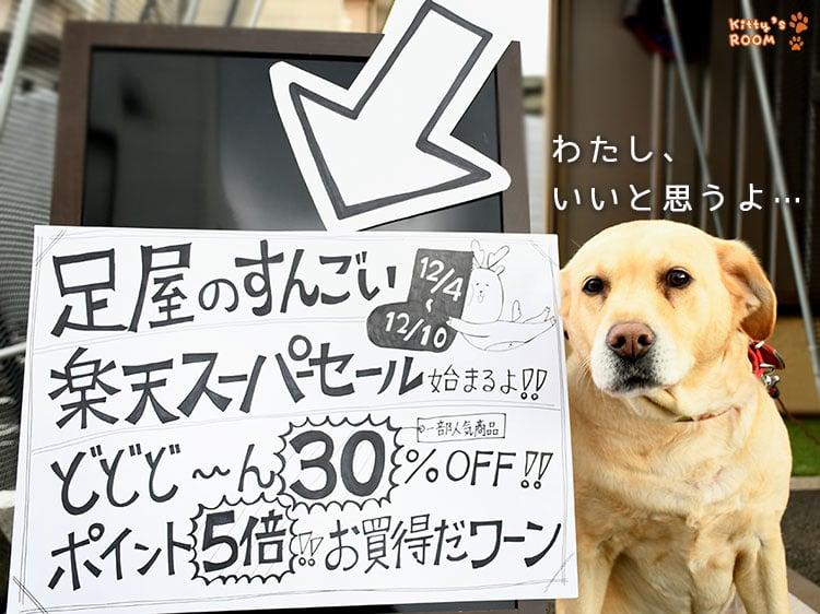 http://choku.co.jp/files/libs/1126/201812030953027991.jpg
