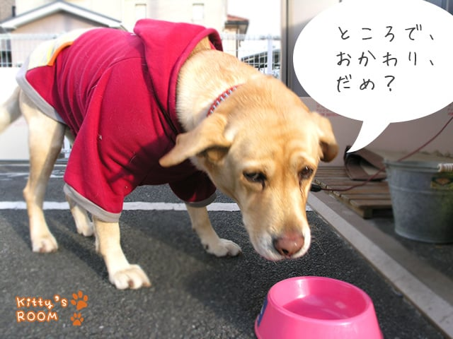 https://choku.co.jp/files/libs/535/201701131613072479.jpg